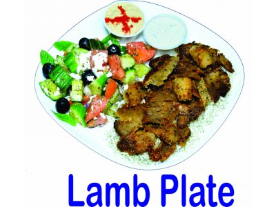 Lamb Plate Mr Greek Donair Burnaby BC